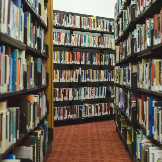 biblioteka 21.05.2018