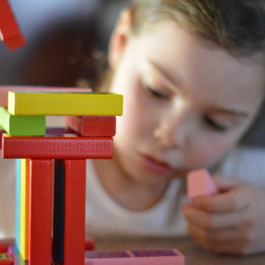 Metoda M.Montessori w praktyce przedszkolnej. Wzbogacanie słownictwa przedszkolaków przy pomocy kart montessoriańskich oraz lekcji trójstopniowej
