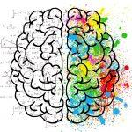 Gimnastyka mózgu – kurs bazowy Kinezjologii Edukacyjnej I i II część